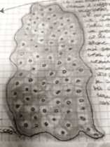 menteplasma