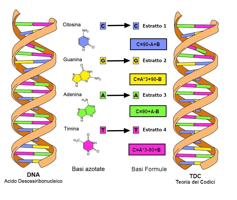 DNA-TDC MAPPATURA